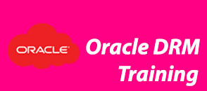 Oracle Hyperion DRM Online Training in India | Hyderabad| USA