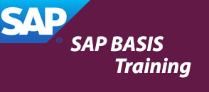 sap-basis-training