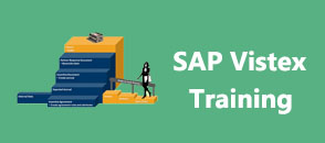 sap-vistex-training